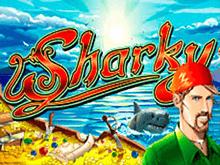 Sharky в игровом клубе Вулкан