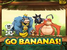Автомат с выводом Вперед Бананы