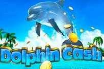 Деньги Дельфина в игровом клубе Вулкан