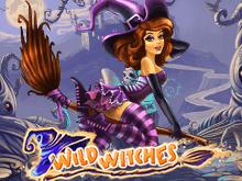 Дикие Ведьмы — автомат Вулкан на деньги
